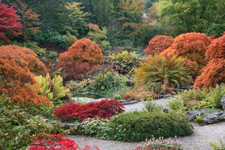 vivid: Garden Shades Stock Photo