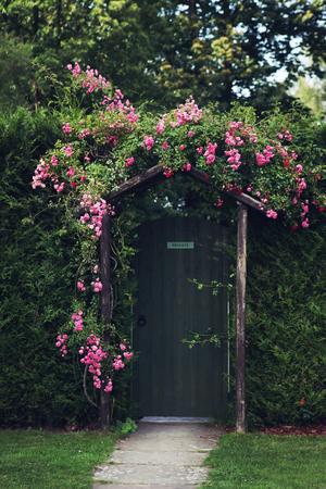 entrance arbor: Rose Arch