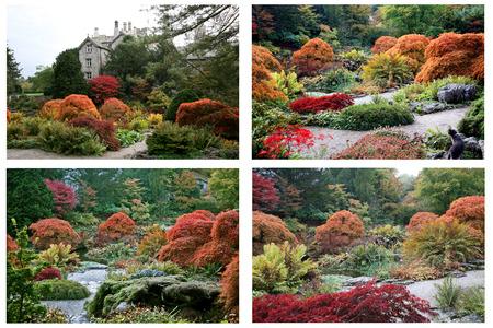 가을 정원 콜라주