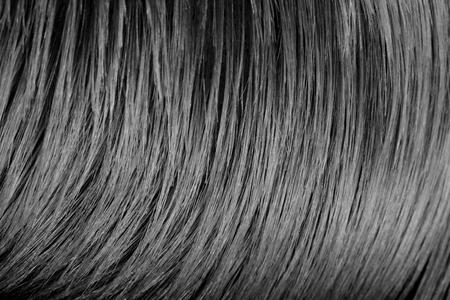 갈색 머리의 머리카락 배경