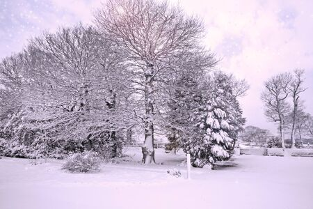 Country Snow Scene in England