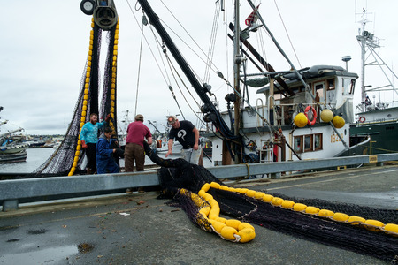 commercial fishing net: Seattle, WA, USA, Oct. 17, 2016: Four men loading a black and yellow fishing net onto commercial fishing boat at Fishermens Terminal in Seattle Editorial