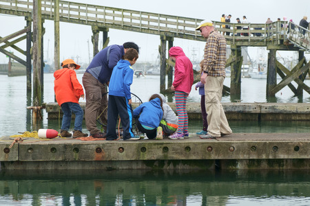crab pot: Westport, WA, USA August 21, 2016: Group of children look at crabs in pot while two adults watch over them.