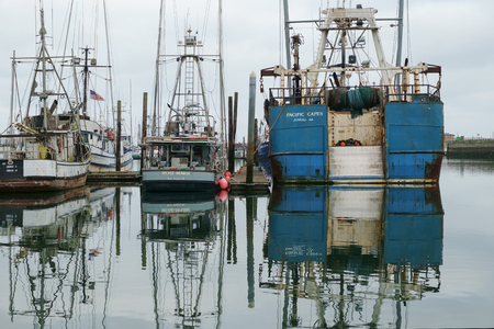 Westport, WA, USA July 22, 2016: Commercial fishing boats of all sizes are reflected in the calm waters of Westport Marina Redakční