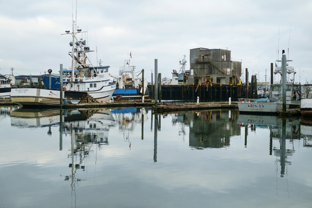 Westport, WA, USA July 22, 2016: Commercial fishing boats of all sizes are reflected in the calm waters of Westport Marina 新聞圖片