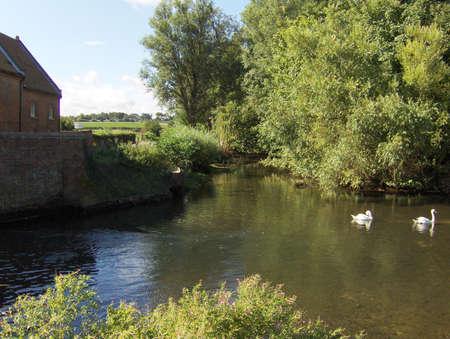 watermill: Burnham Overy molino de agua