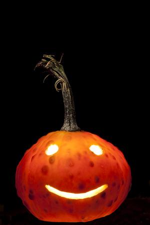 jack'o'lantern: Gourd Jack-o-lantern