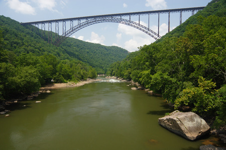west virginia trees: New River Gorge Bridge Scenic