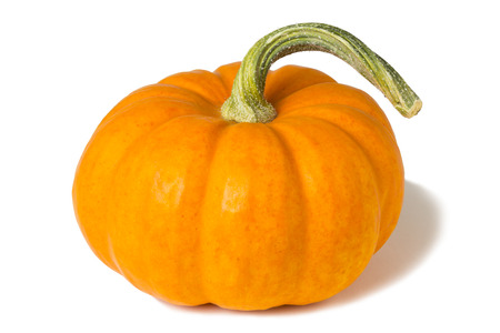 Orange Mini Pumkin Stock Photo