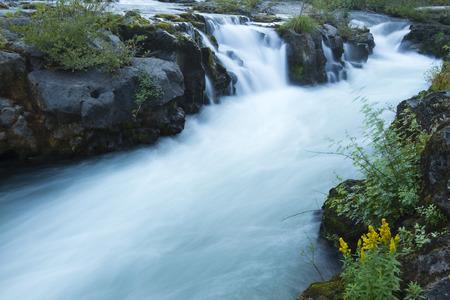 Rogue River Falls photo