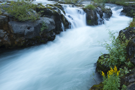 oregon cascades: Rogue River Falls
