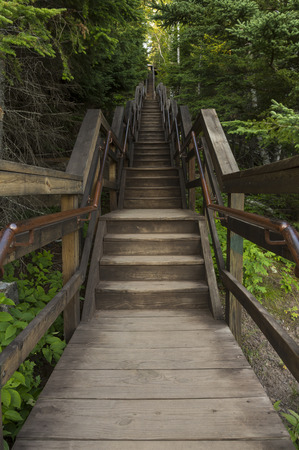 minnesota woods: Stairs In The Woods Stock Photo