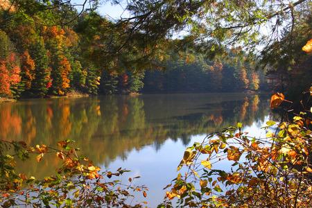 west virginia trees: Watoga Lake In Autumn