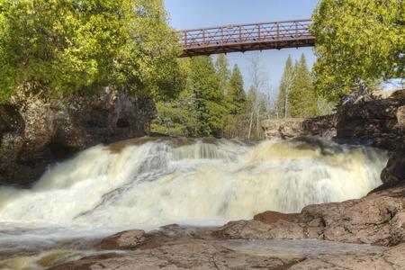 grosella: Grosella espinosa Quinta Falls Foto de archivo