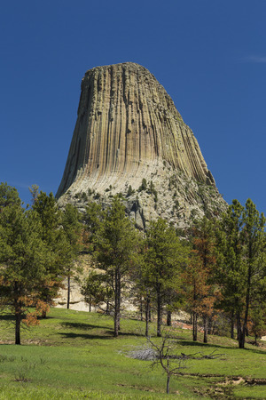 rock formation: Devils Tower Rock Formation