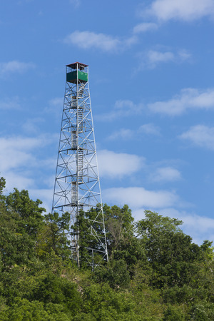 hill station tree: Fire Watch Tower