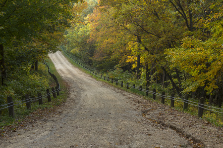 Rural Road In Autumn Woods Stock Photo