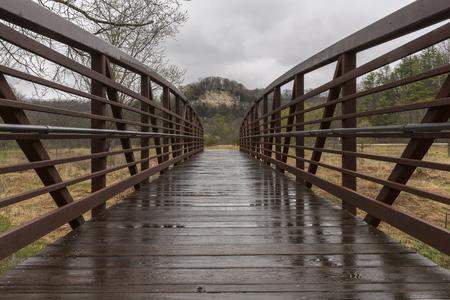 Wet Footbridge