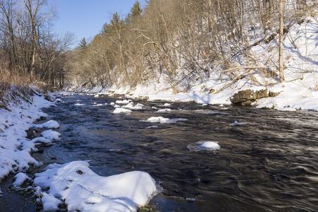 River In Woods In Winter