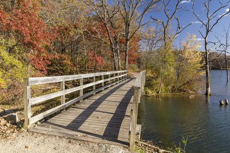and hiking path: Autumn Trail Bridge Scenic