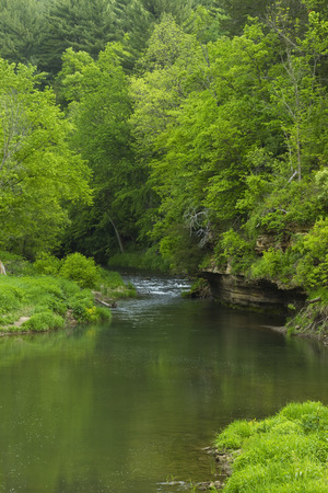 Springtime River Scenic