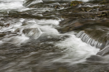 rapids: River Rapids