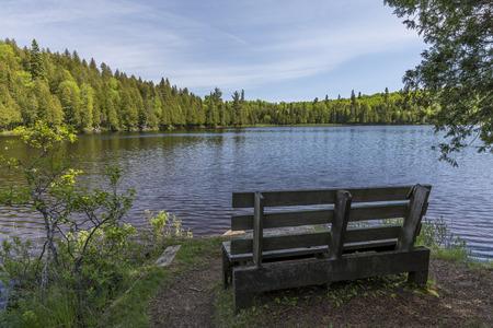 Lake Benson with park bench. Stock Photo