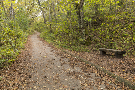 Uphill Hiking Trail - A hiking trail on a hill in the woods with a bench in early autumn. Stock Photo