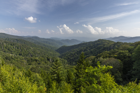 Smoky Mountains Scenic Landscape