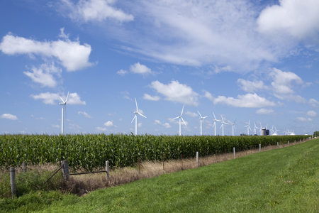 Wind Generators In A Corn Field Stock Photo