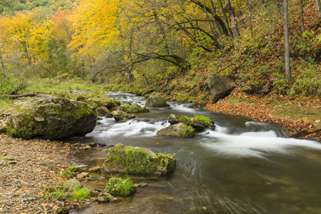 River In The Woods In Autumn Stock Photo