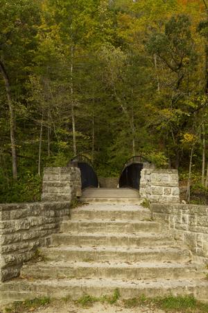 Bridge To Woods In Autumn
