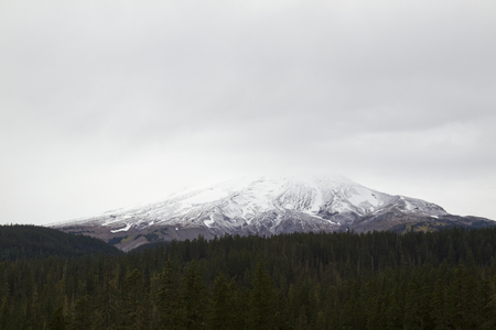 Mt. Hood Scenic View