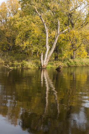 Mississipp River Backwaters In Autumn Stock Photo