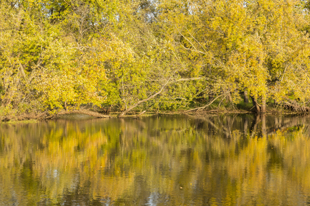 Mississippi River Backwaters In Autumn