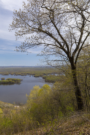 Mississippi River Scenic View In Spring