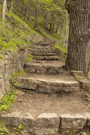 Stone Step Trail In The Woods In Spring