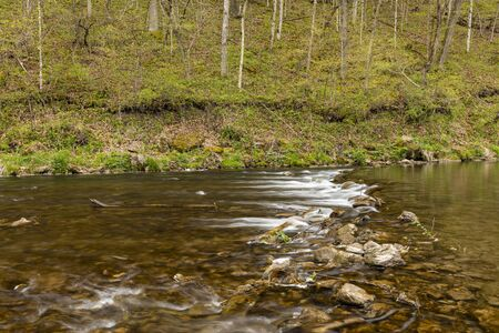 A river with a rock dam in the woods during spring.