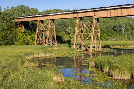 Railroad high bridge over a swampy creek.