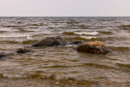 Lake Of The Woods - A very large lake with a rocky shore.