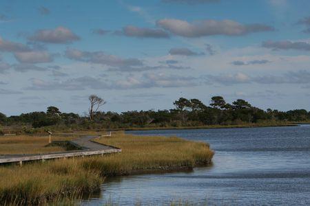 wetland: Wetland scenery