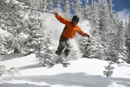 off piste: Skier ripping through trees covered in powdersnow