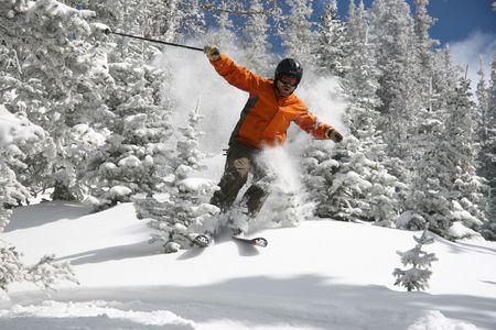 arri�re-pays: Skieur de d�chirure � travers les arbres couverts dans Powdersnow
