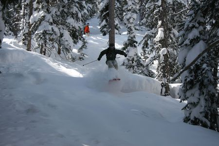 co action: Big mountain skier ripping through deep powder and trees Stock Photo