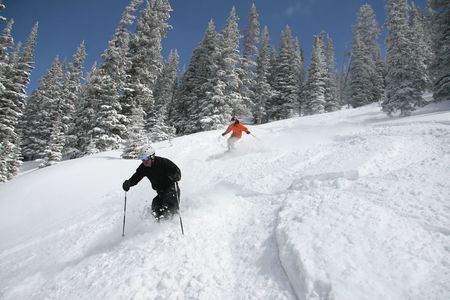colorado: Professional skiers ripping through deep powder snow