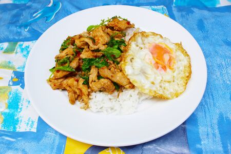 Rice with stir-fried basil leaves with chicken and sunny up on top,Thai food