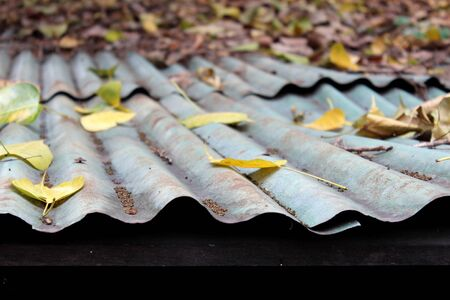 Zinc roof filled with dry leaves as a background 写真素材