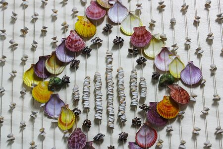 Colorful seashells on a small rope hanging on the wall