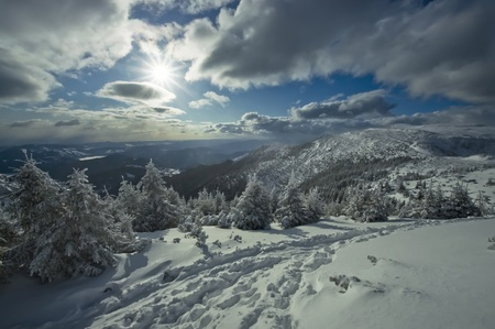 path in winter mountain landscape photo