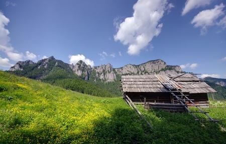 sheepfold: Carpathian mountain landscape with sheepfold in summer Stock Photo